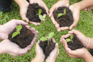 Ajaran Islam dalam Menjaga Lingkungan, Ini Detailnya