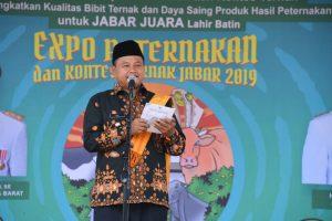 Tak Bisa Penuhi Kebutuhan Sapi, Pemprov Jabar Datangkan dari Luar Jawa